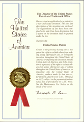Copy of patent grant image